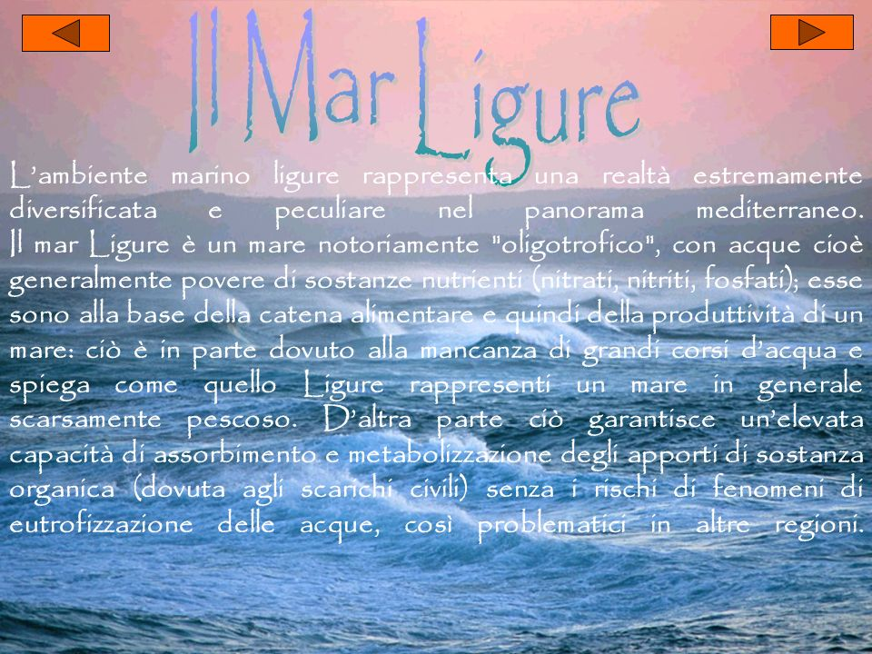 Il Mar Ligure