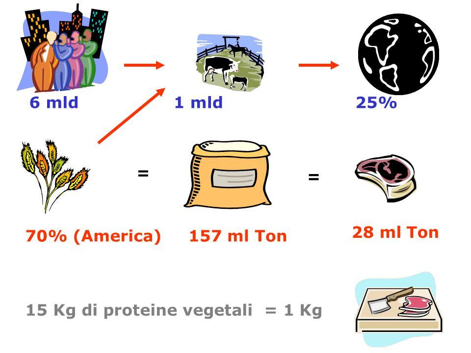 6 mld 1 mld 25% = = 28 ml Ton 70% (America) 157 ml Ton 15 Kg di proteine vegetali = 1 Kg
