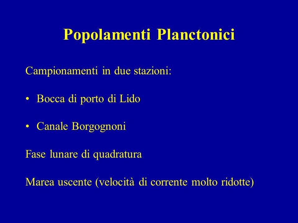 Popolamenti Planctonici