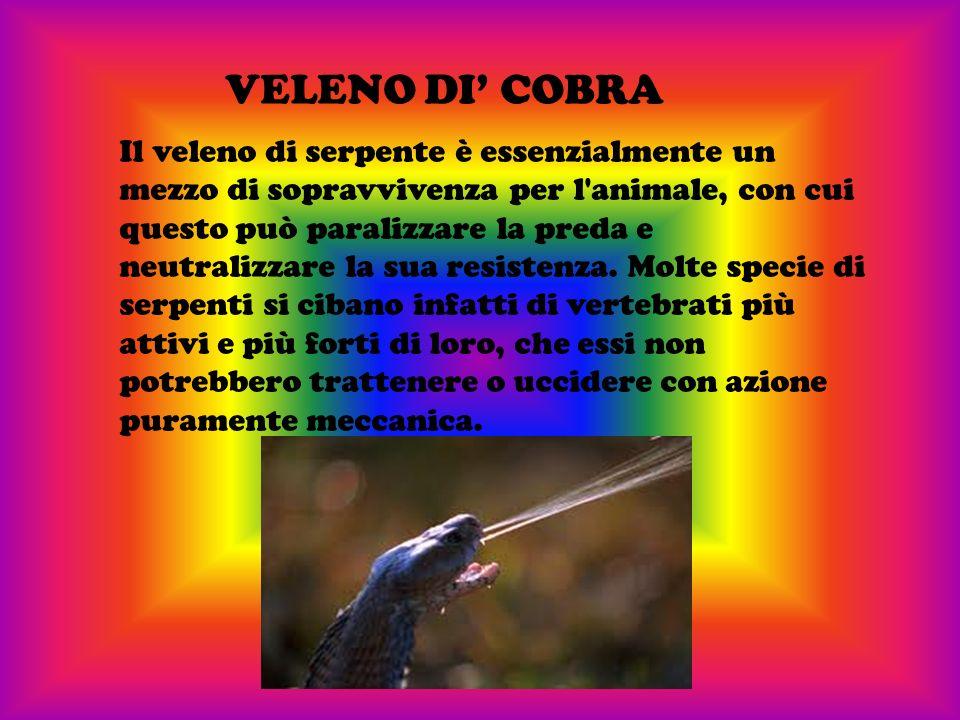 VELENO DI' COBRA