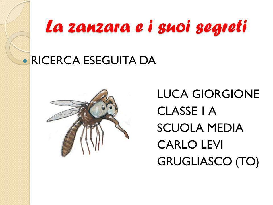 La zanzara e i suoi segreti