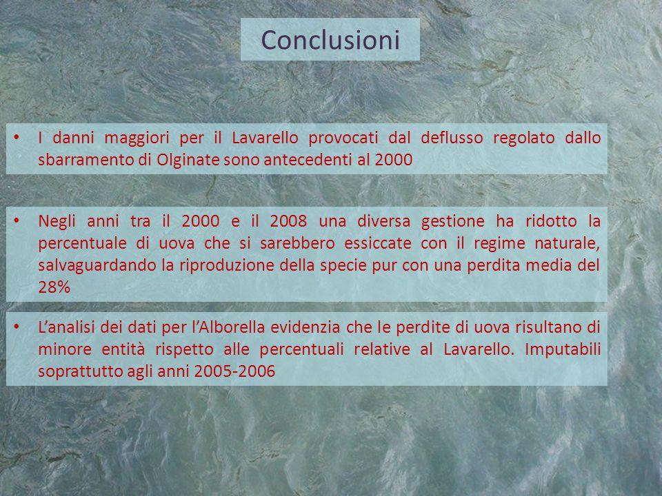 ConclusioniI danni maggiori per il Lavarello provocati dal deflusso regolato dallo sbarramento di Olginate sono antecedenti al 2000.