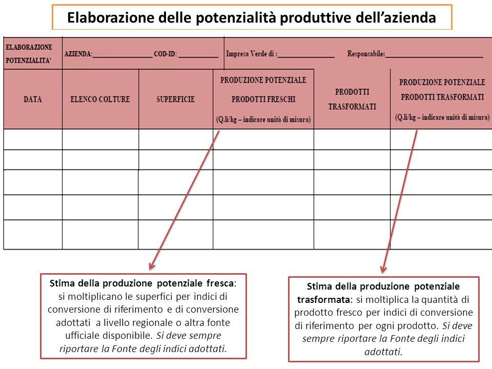 Elaborazione delle potenzialità produttive dell'azienda