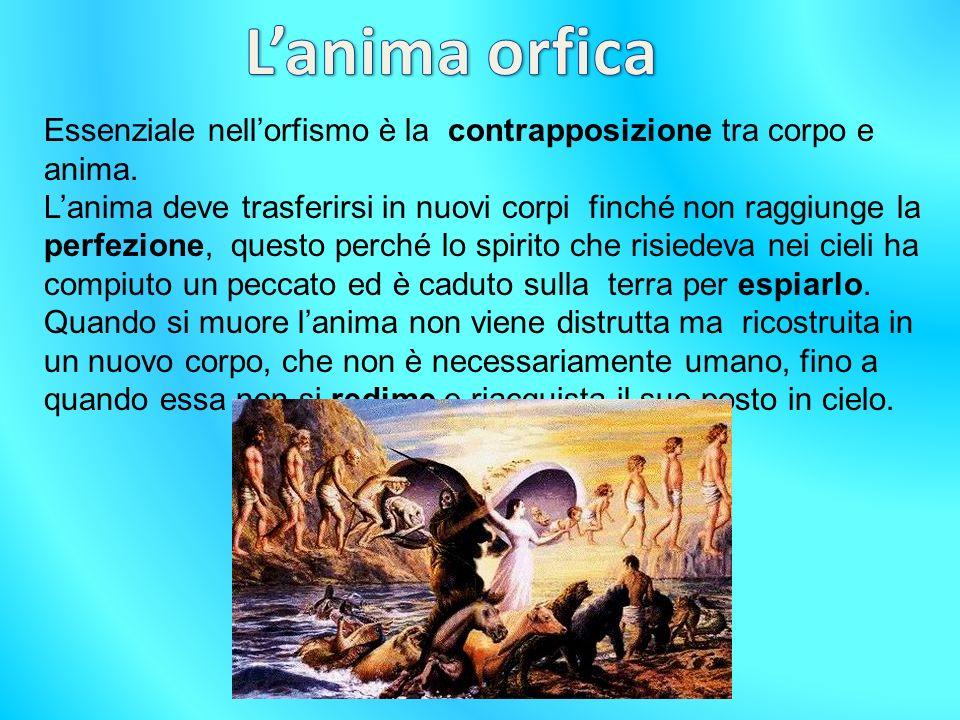 L'anima orfica Essenziale nell'orfismo è la contrapposizione tra corpo e anima.
