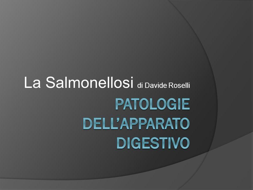 PATOLOGIE DELL'APPARATO DIGESTIVO