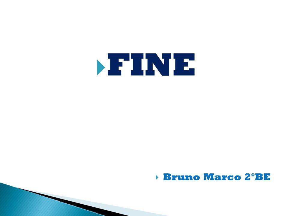 FINE Bruno Marco 2°BE