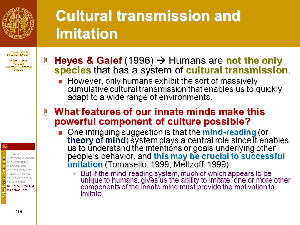 Cultural transmission and Imitation