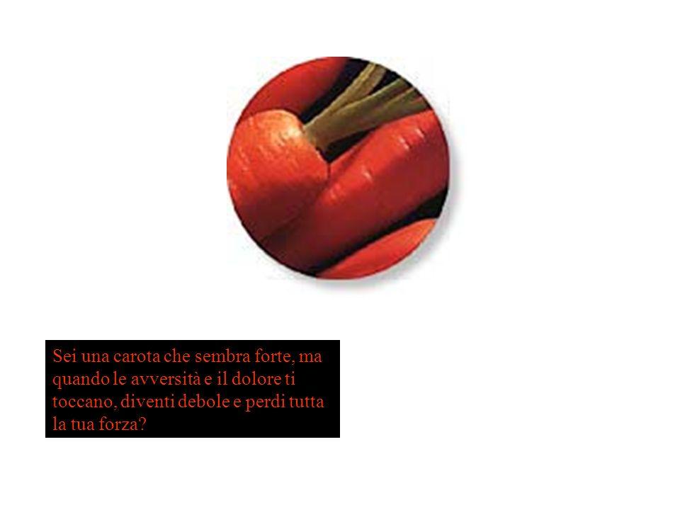 Sei una carota che sembra forte, ma quando le avversità e il dolore ti toccano, diventi debole e perdi tutta la tua forza