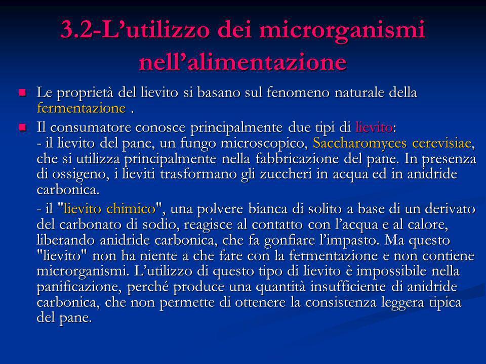 3.2-L'utilizzo dei microrganismi nell'alimentazione