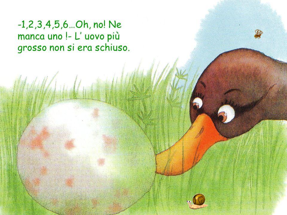 -1,2,3,4,5,6…Oh, no! Ne manca uno !- L' uovo più grosso non si era schiuso.