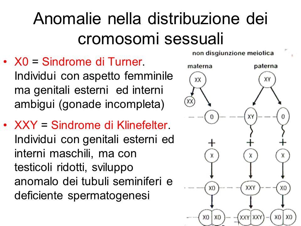 Anomalie nella distribuzione dei cromosomi sessuali
