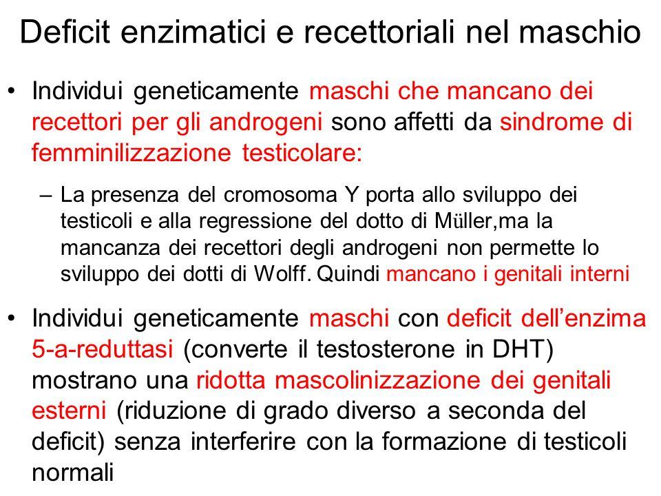Deficit enzimatici e recettoriali nel maschio