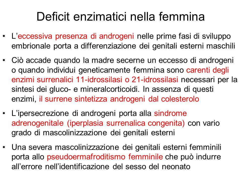Deficit enzimatici nella femmina