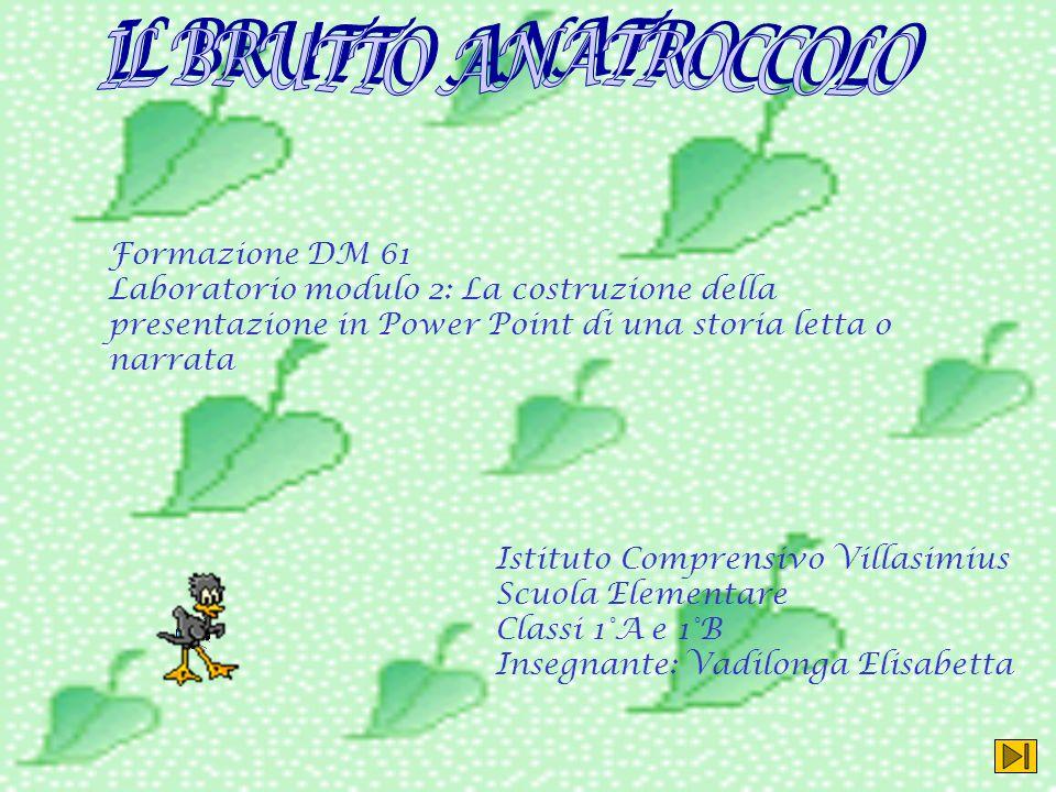 IL BRUTTO ANATROCCOLO Formazione DM 61