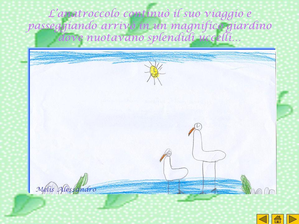 L'anatroccolo continuò il suo viaggio e passeggiando arrivò in un magnifico giardino dove nuotavano splendidi uccelli…