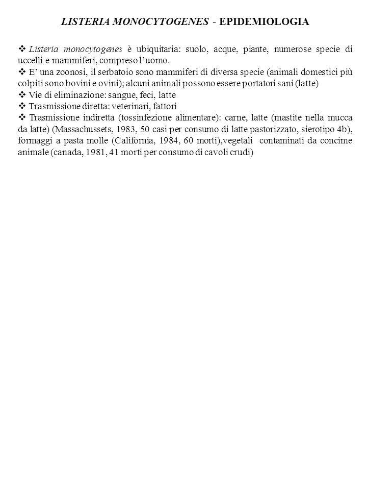LISTERIA MONOCYTOGENES - EPIDEMIOLOGIA