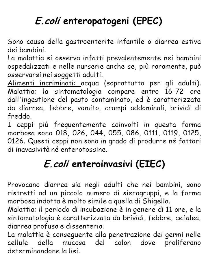E.coli enteroinvasivi (EIEC)