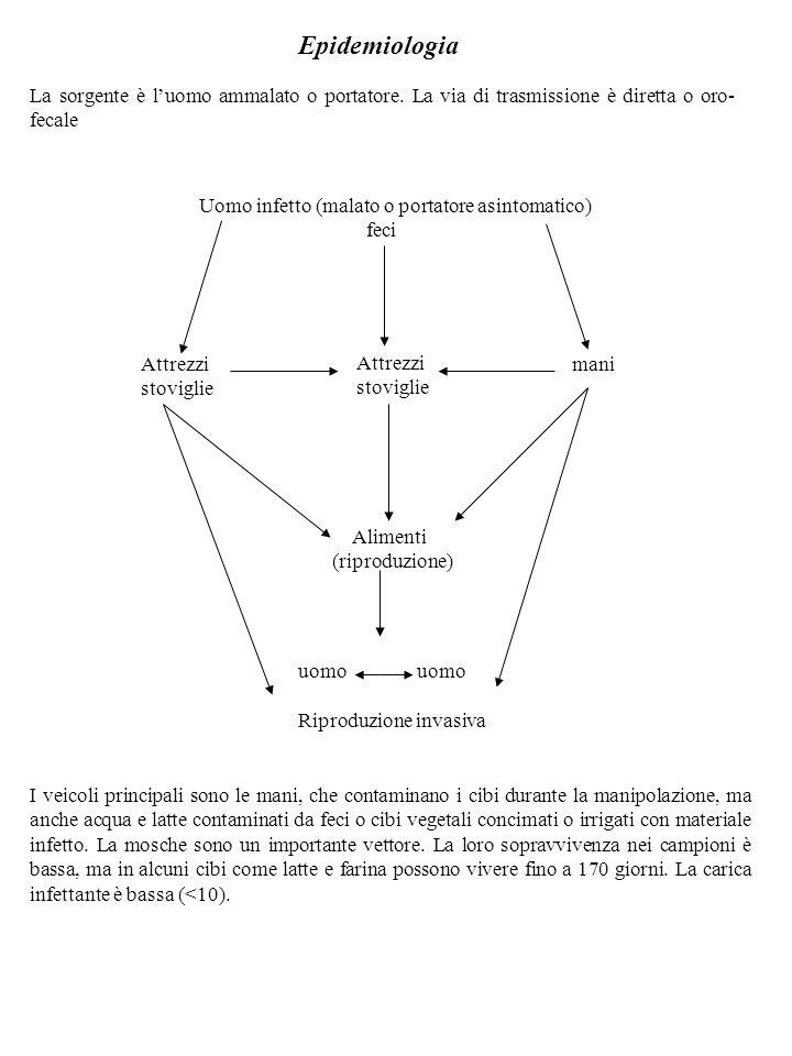 Epidemiologia La sorgente è l'uomo ammalato o portatore. La via di trasmissione è diretta o oro-fecale.