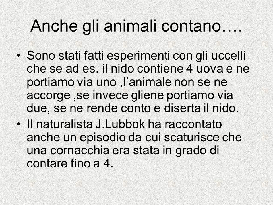 Anche gli animali contano….