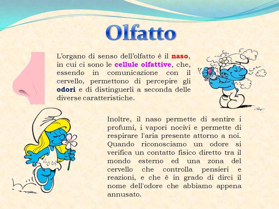 Super Gruppo Minù Ciao Bambini! - ppt video online scaricare UH14