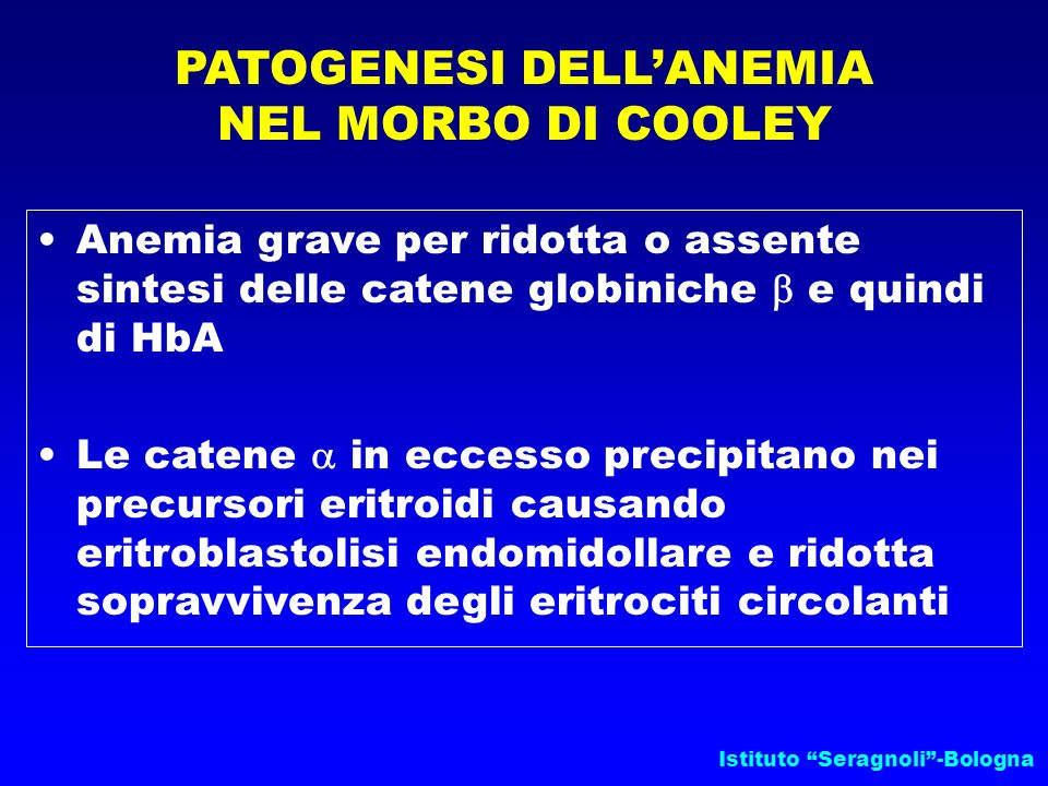 PATOGENESI DELL'ANEMIA NEL MORBO DI COOLEY