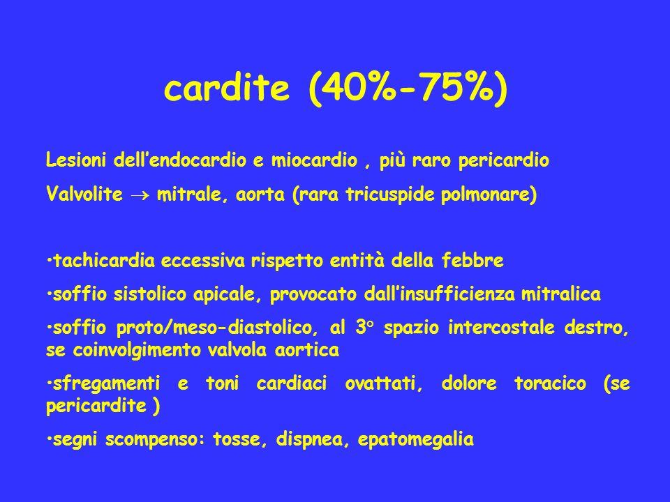 cardite (40%-75%) Lesioni dell'endocardio e miocardio , più raro pericardio. Valvolite  mitrale, aorta (rara tricuspide polmonare)