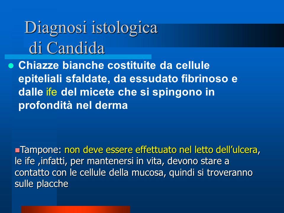 Diagnosi istologica di Candida