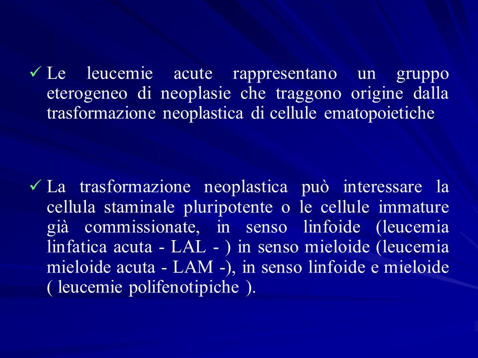 Le leucemie acute rappresentano un gruppo eterogeneo di neoplasie che traggono origine dalla trasformazione neoplastica di cellule ematopoietiche