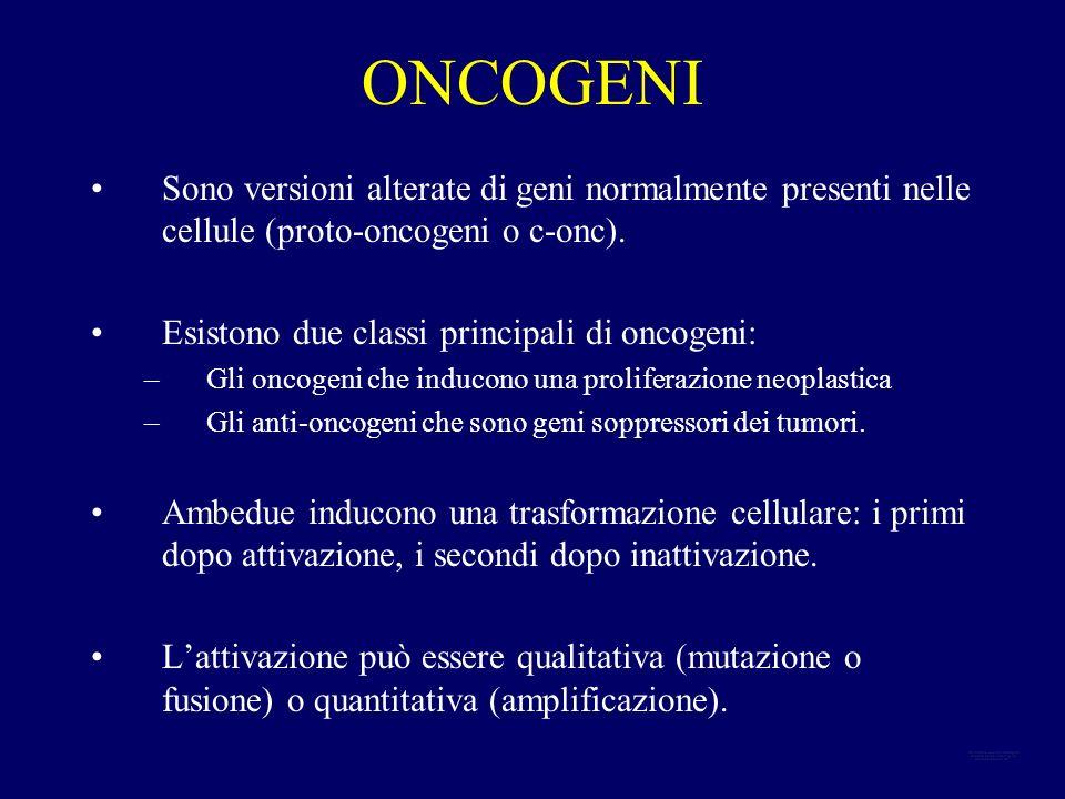ONCOGENI Sono versioni alterate di geni normalmente presenti nelle cellule (proto-oncogeni o c-onc).