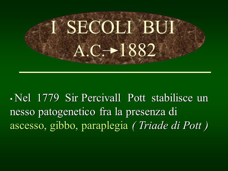 I SECOLI BUI A.C. 1882.