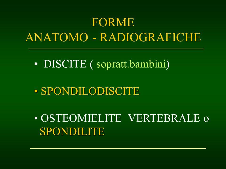 FORME ANATOMO - RADIOGRAFICHE