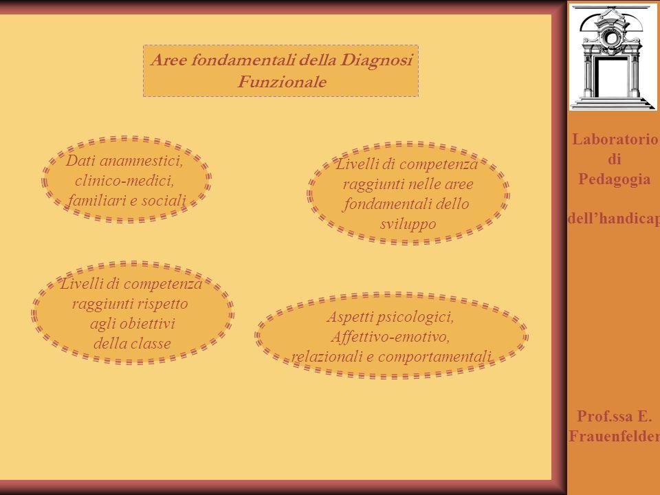 Aree fondamentali della Diagnosi Funzionale