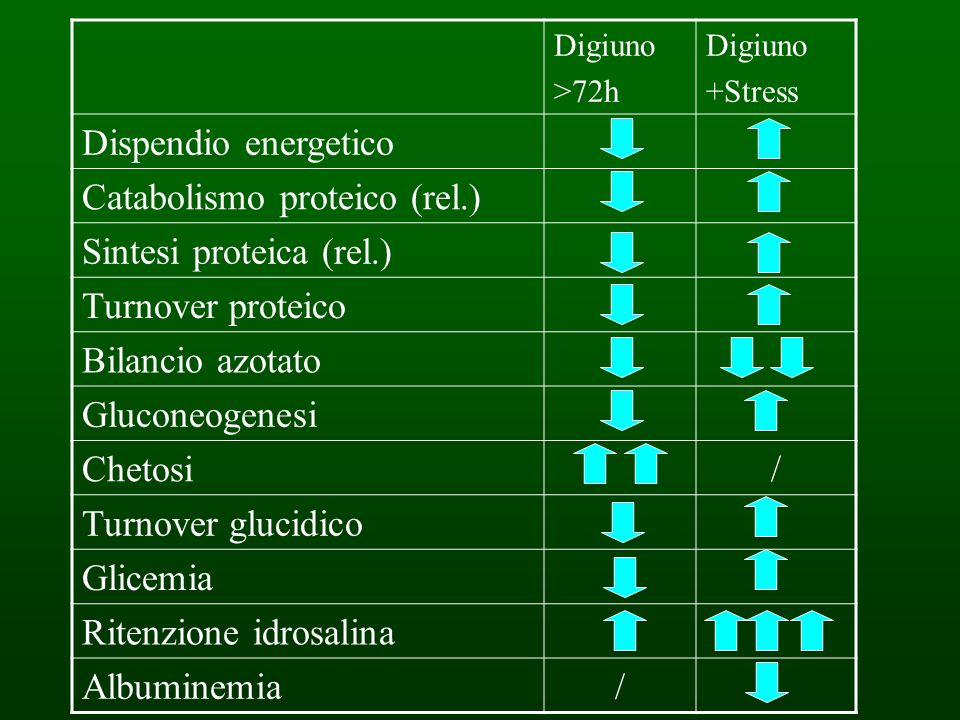 Catabolismo proteico (rel.) Sintesi proteica (rel.) Turnover proteico
