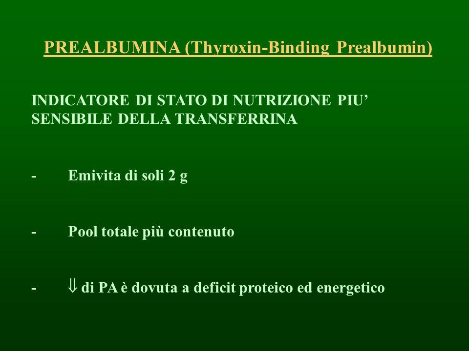 PREALBUMINA (Thyroxin-Binding Prealbumin)