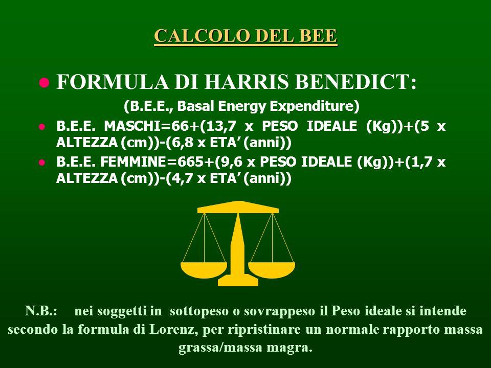 FORMULA DI HARRIS BENEDICT: