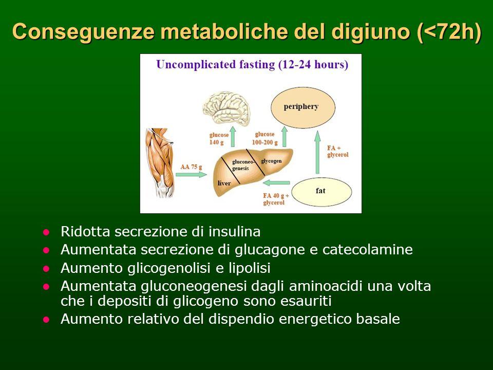 Conseguenze metaboliche del digiuno (<72h)