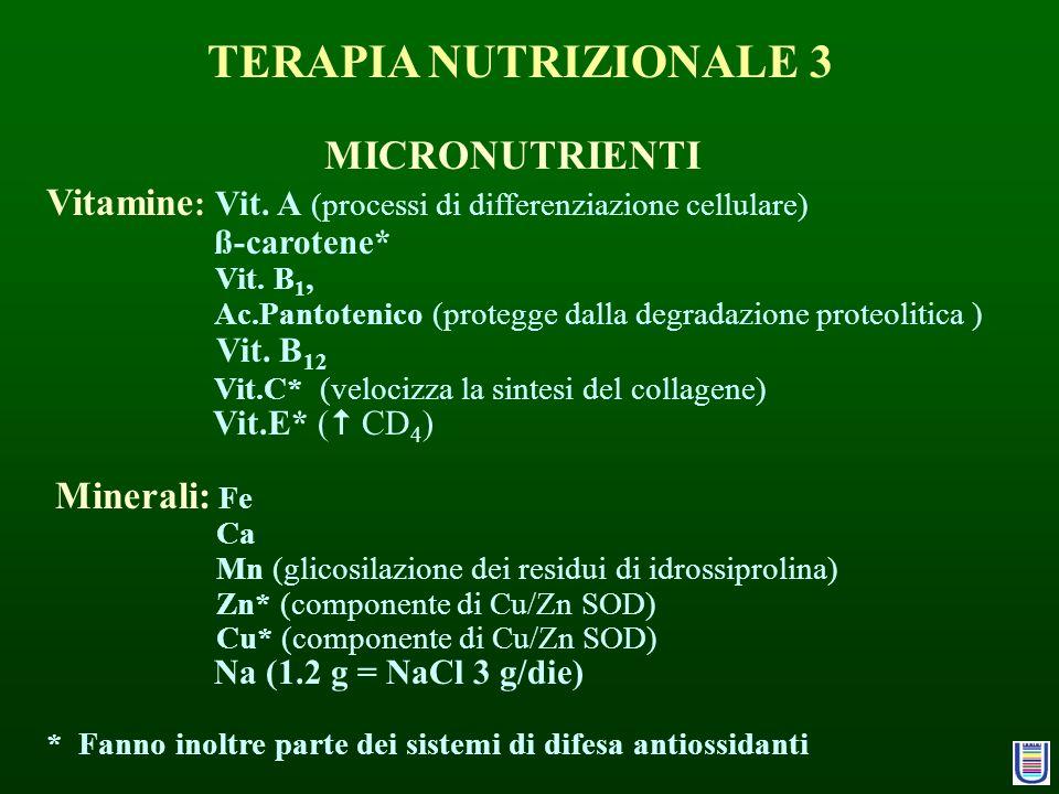 TERAPIA NUTRIZIONALE 3 MICRONUTRIENTI