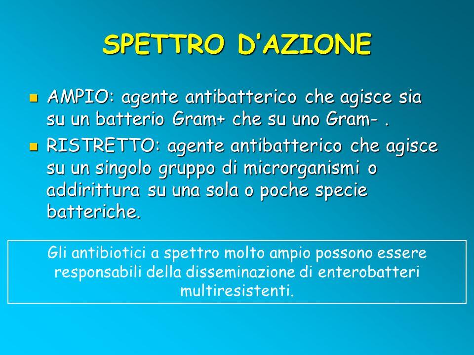 SPETTRO D'AZIONE AMPIO: agente antibatterico che agisce sia su un batterio Gram+ che su uno Gram- .