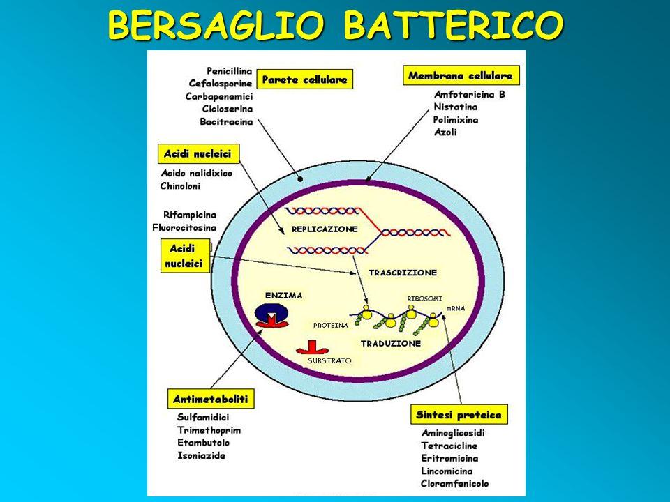 BERSAGLIO BATTERICO