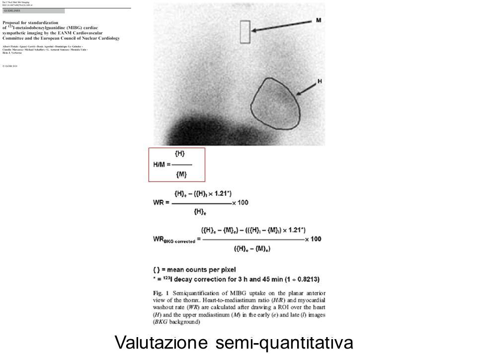 Valutazione semi-quantitativa