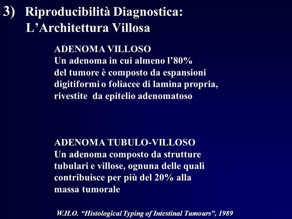 3) Riproducibilità Diagnostica: L'Architettura Villosa