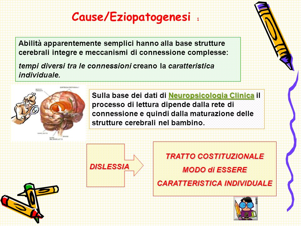 Cause/Eziopatogenesi 1