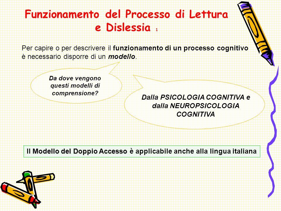 Funzionamento del Processo di Lettura e Dislessia 1