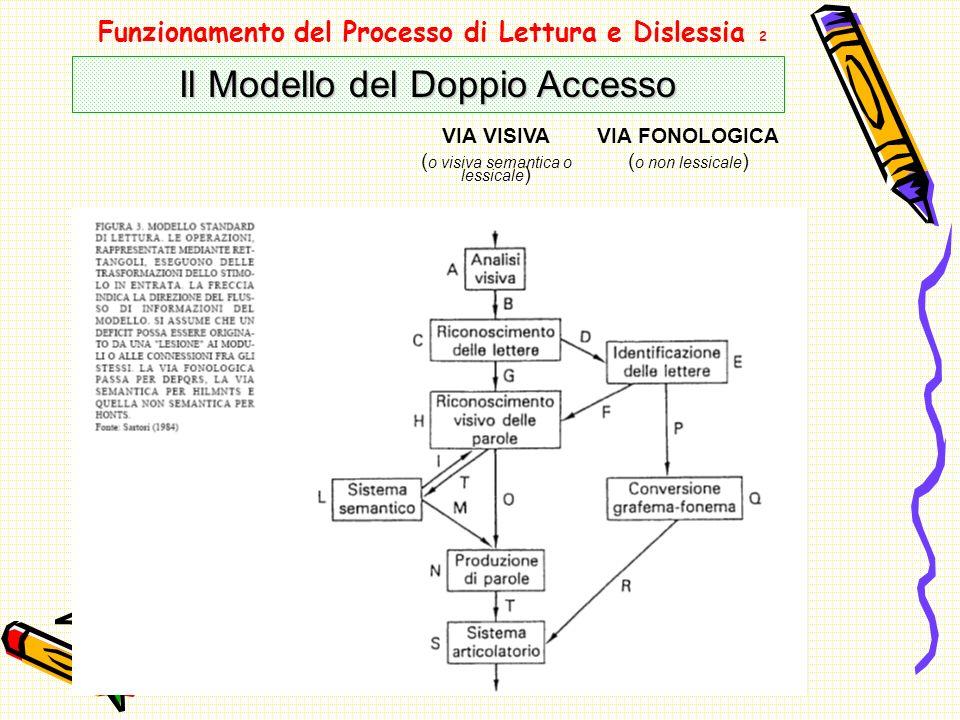 Funzionamento del Processo di Lettura e Dislessia 2