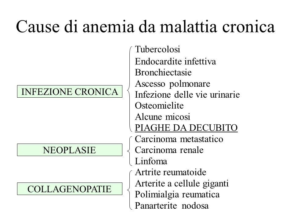 Cause di anemia da malattia cronica