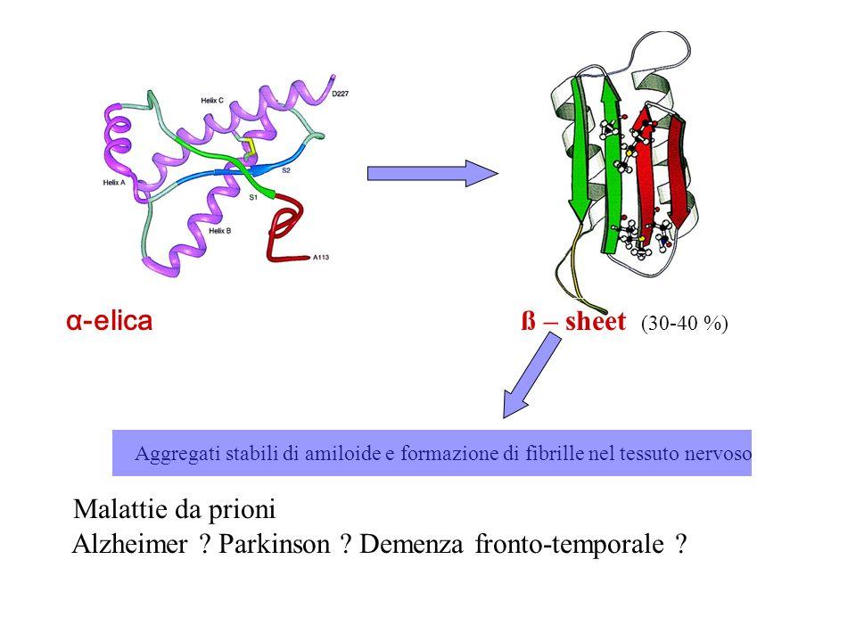 Alzheimer Parkinson Demenza fronto-temporale