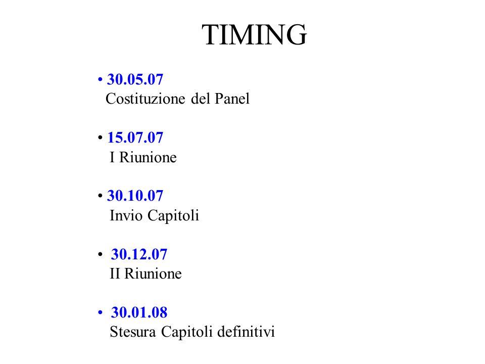 TIMING 30.05.07 Costituzione del Panel 15.07.07 I Riunione 30.10.07