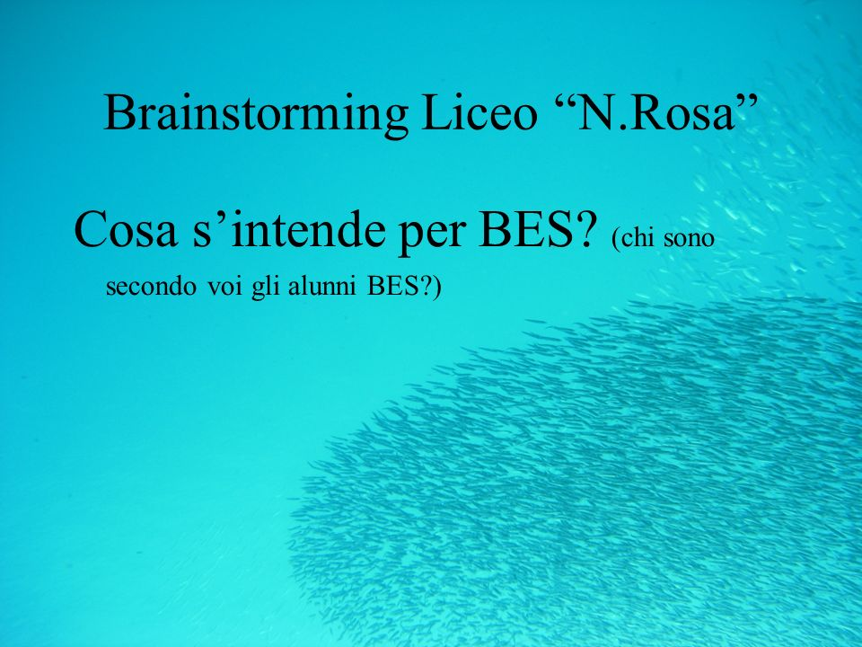 Brainstorming Liceo N.Rosa