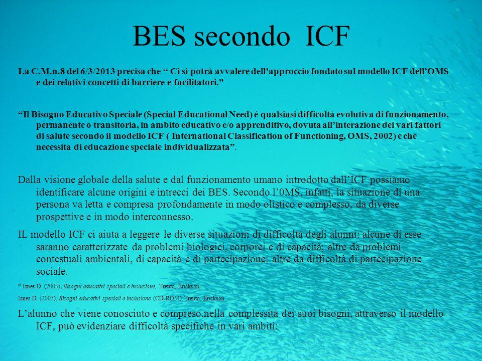 BES secondo ICF
