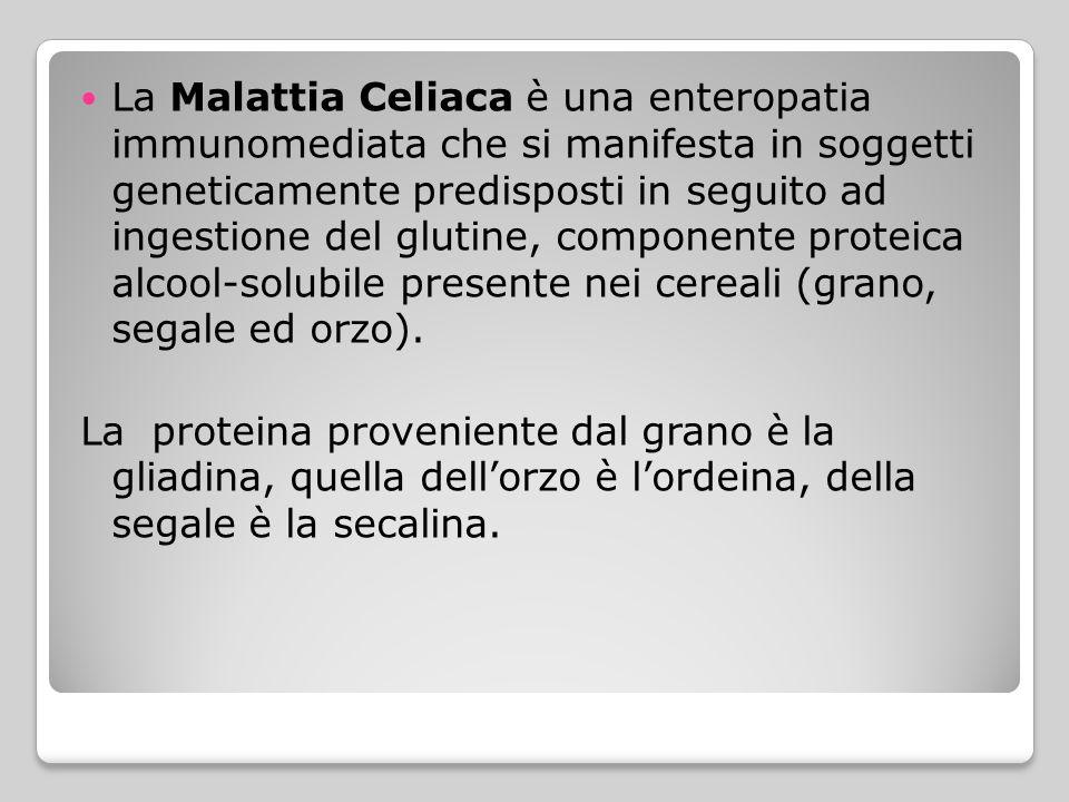 La Malattia Celiaca è una enteropatia immunomediata che si manifesta in soggetti geneticamente predisposti in seguito ad ingestione del glutine, componente proteica alcool-solubile presente nei cereali (grano, segale ed orzo).